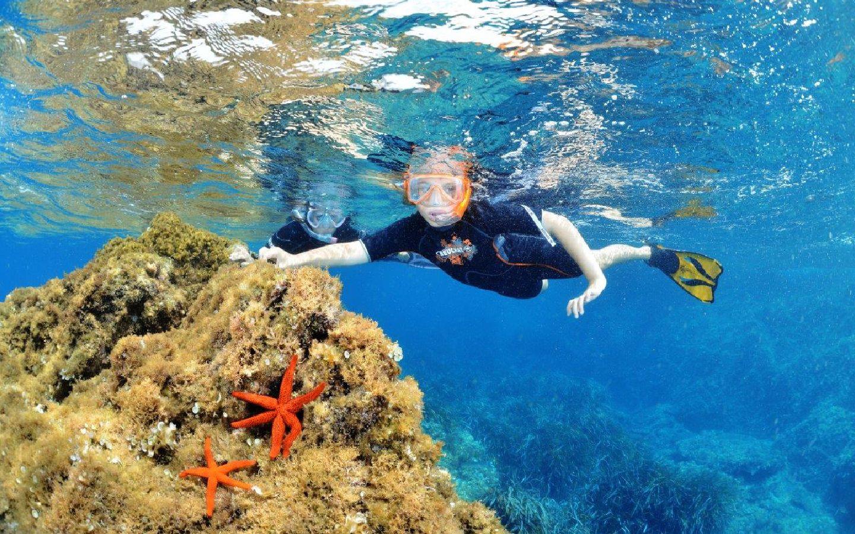 Nautile-img4-environnement-tourisme-Location-Vacances-Hyeres-compressor
